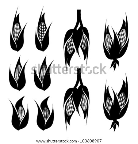 corn cob icon set