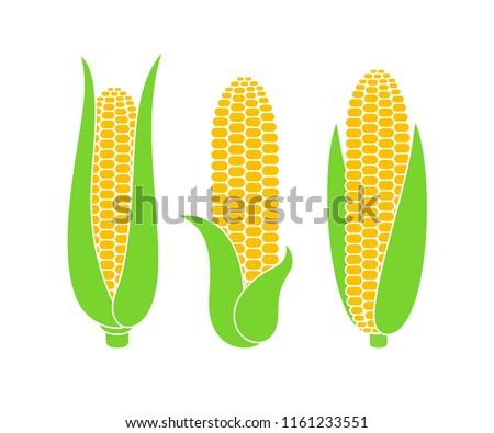 Corn logo. Isolated corn on white background. EPS 10. Vector illustration
