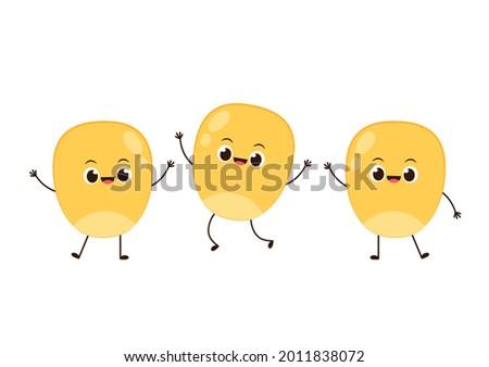 Corn vector. Corn kernel character design. Corn on white background. Corn kernel vector.