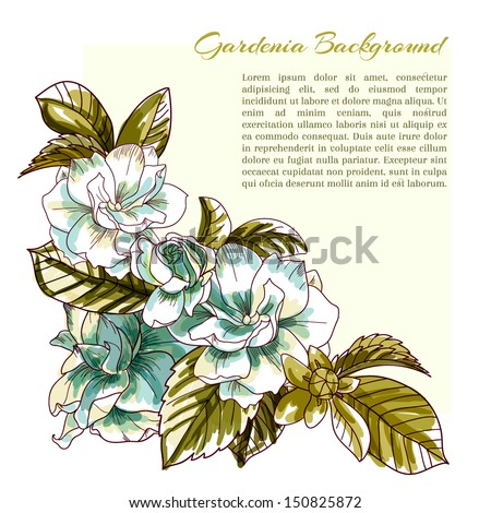 corner gardenia background