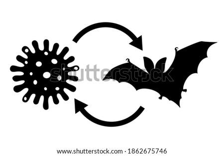 Coronavirus came from bats vector illustration on white background Stock photo ©