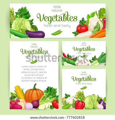 Corporate style template for farm business. Vector vegetables. Concept healthy food. Cabbage or pepper, beets and carrots. Onion, zucchini, eggplant and asparagus. Corn, celery and mushrooms.