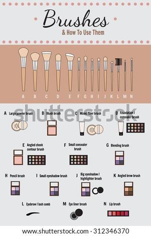 cosmetic infographics   vector