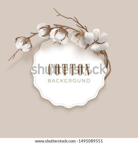 Cotton vector design with round frame, cotton plant and place for text on a light background. White cotton buds, brown branch. Vector illustration