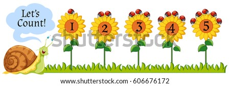 counting numbers on sunflowers