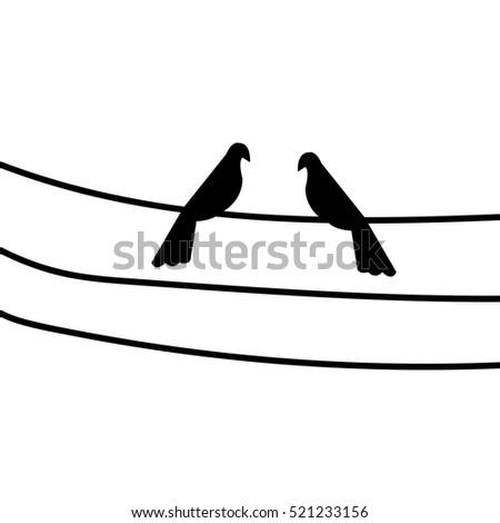 couple bird on the power line