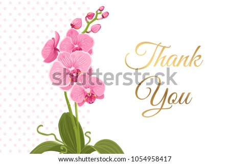 courtesy thank you card