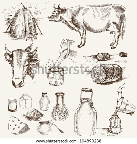 cow and milk products. set of vector elements