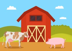Cow and pig swine on farm. Mammal animals on ranch. Red barn for piglet to live inside agriculture and breeding natural production vector illustration