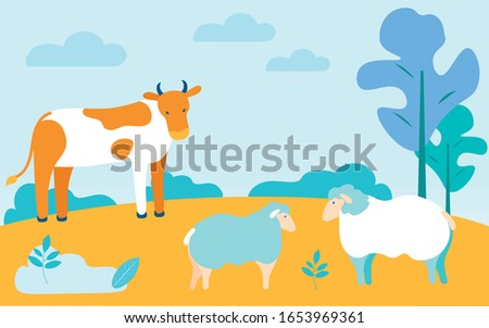 cow and sheep at pasture on