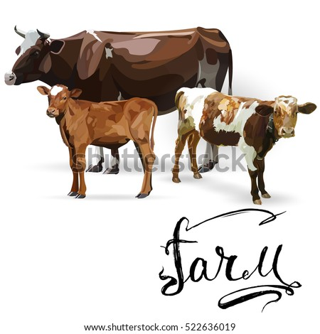Cow Calf brown, vector