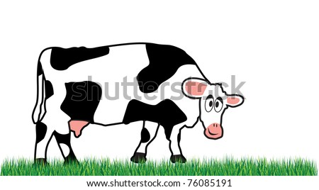 cow on a meadow