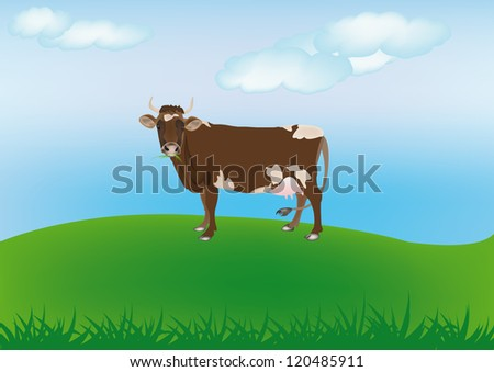 Cow over spring green meadow.The rural landscape