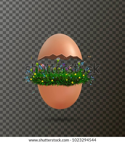 crack egg with flowers growing