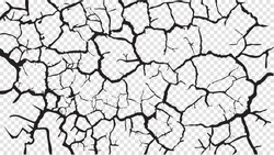 Cracked barren desert earth on transparent background banner caused by drought from global warming