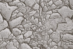 Cracked earth vector background