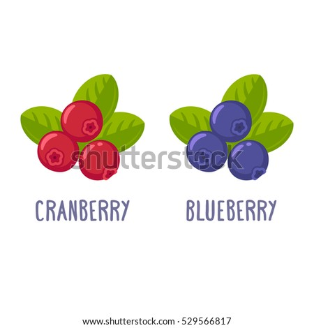 Cranberry and blueberry illustration. Cartoon vector set of berries.