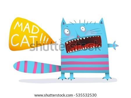 crazy cat fun eccentric animal