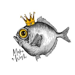 Crazy fish in the gold crown. Humor card, t-shirt composition, hand drawn style print. Vector illustration.