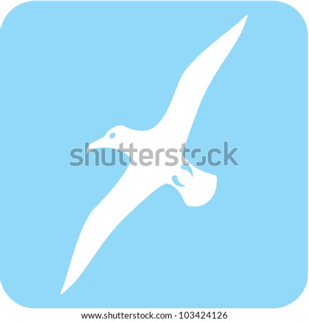 Creative Albatross Bird Icon
