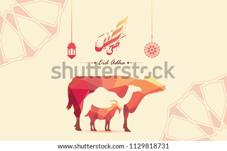 creative banner cow camel and...