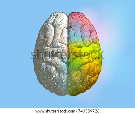 Creative concept of Left and right brain illustration with colorful on right side isolated on light blue background