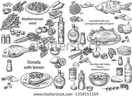 Creative conceptual vector set. Sketch hand drawn different mediterranean dishes salad chicken fish pork stew vegetables seafood illustration, engraving, ink, line art, vector.