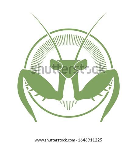 creative design of mantis icon