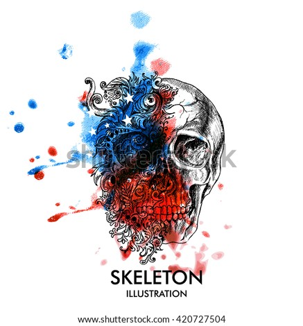creative illustration of skull