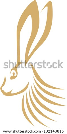 Creative Jack Rabbit Illustration