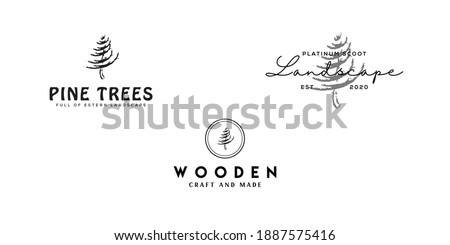 creative set pine logo design with vintage and modern retro styles: pine trees logo, custom wooden logo, landscape logo. isolated white background
