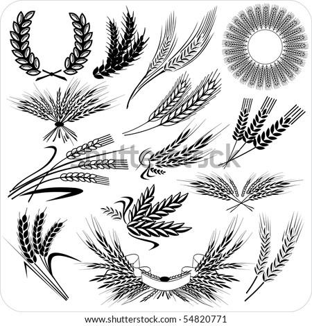 Creative wheat ears & laurel wreath & wheat sheafs