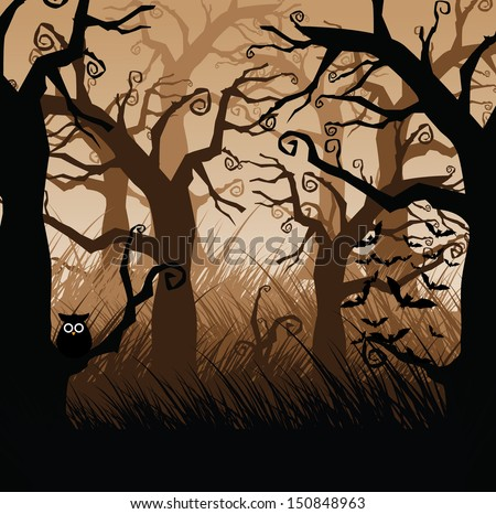 creepy forest of gnarled trees