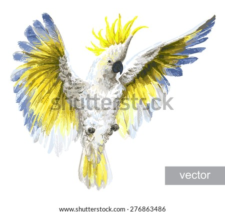 crested cockatoo vector