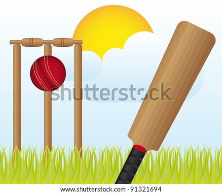 cricket set over landscape with grass and sky vector