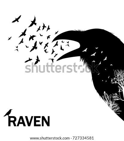 croaking crow or raven vector