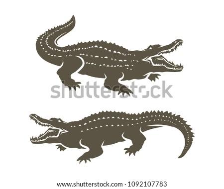 Crocodiles' Shapes isolated on white background.Vector illustration.