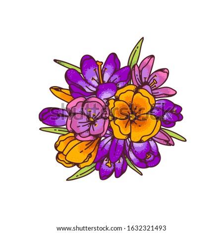 crocus bouquet flowers colorful