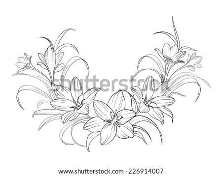crocus flowers isolated over