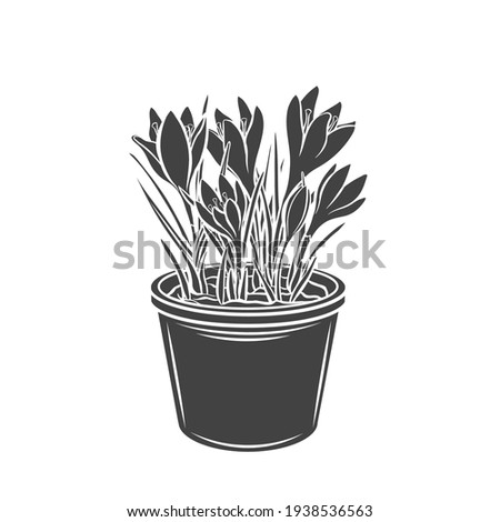 crocus in a pot glyph icon