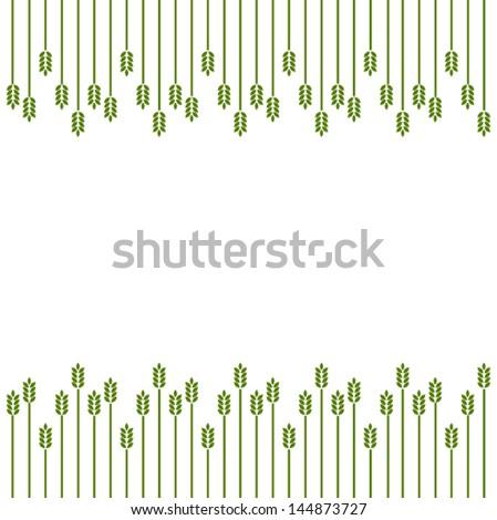 crop   grass   grain background