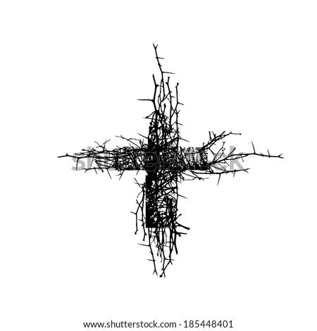 cross branch vector