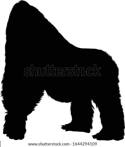 Cross River Gorilla (Gorilla Gorilla Diehli) Silhouette Vector Found In Map Of Africa