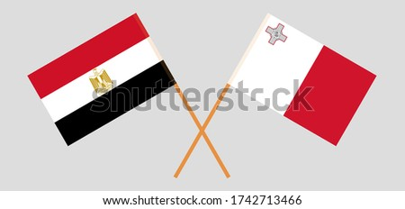 crossed flags of egypt and
