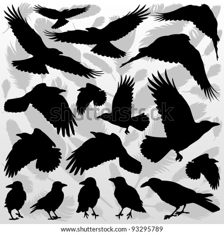 Crow and feathers silhouettes illustration collection background vector