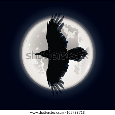 Crow and moon. The vector illustration of crow flying in the night