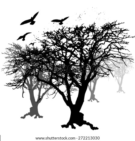 crow and trees backgrounds
