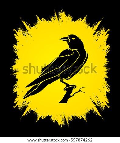 crow designed on grunge frame
