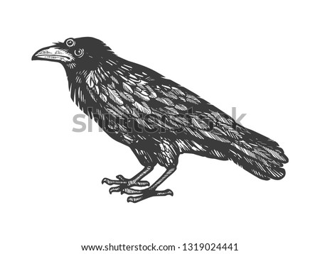 crow with three eyes sketch