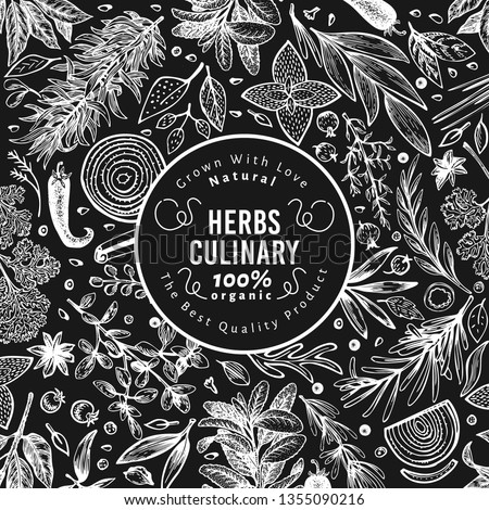 Culinary herbs and spices banner template. Vector background for design menu, packaging, recipes, label, farm market products. Hand drawn retro botanical illustration on chalk board.